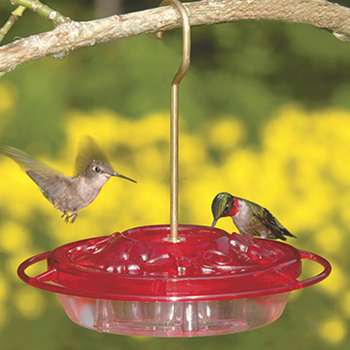 Little Fancy Hummingbird Feeder