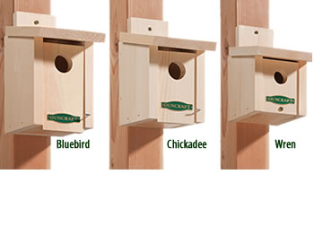 songbird owl woodpecker bird houses roosting boxes