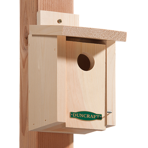 BestBasic Bluebird House