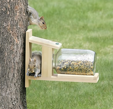 Duncraft Squirrel Jar Feeder