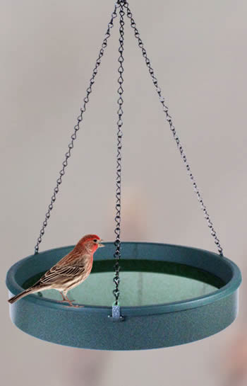 Hanging Verdigris Bird Bath