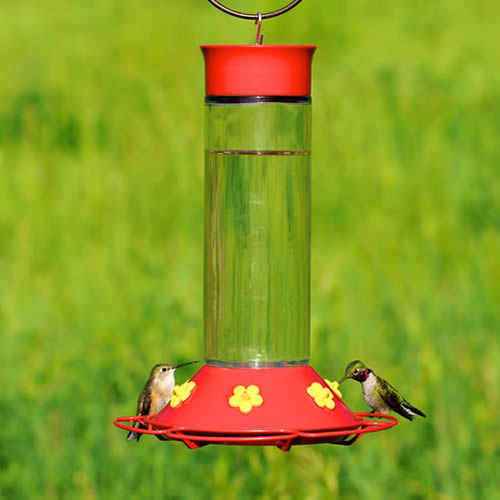 30 Ounce Glass Hummingbird Feeder