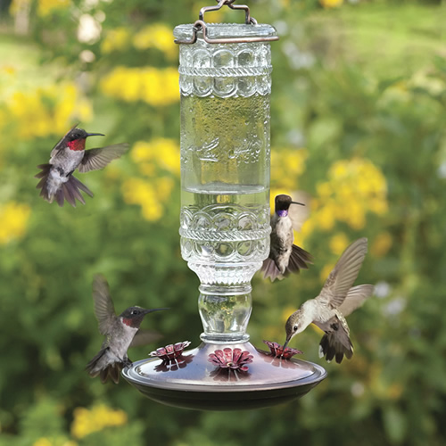 Clear Antique Hummingbird Feeder
