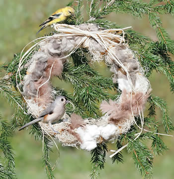 Feather Your Nest Wreath