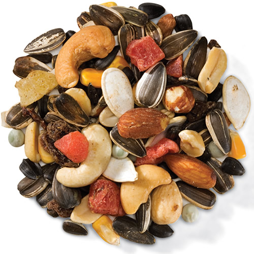 Extreme Trail Mix Bird Seed