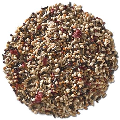 Fancy Finch with Cranberries Bird Seed