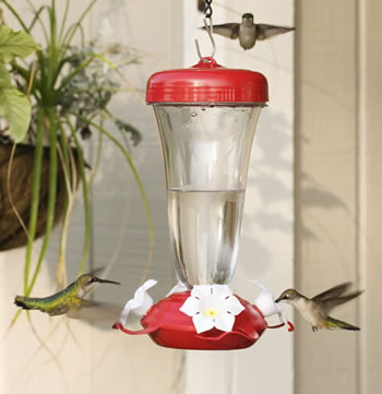 Primrose Hummingbird Feeder