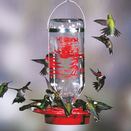 Best-1 Hummingbird Feeder 32 oz.