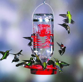Best 1 Hummingbird Feeder 32 oz
