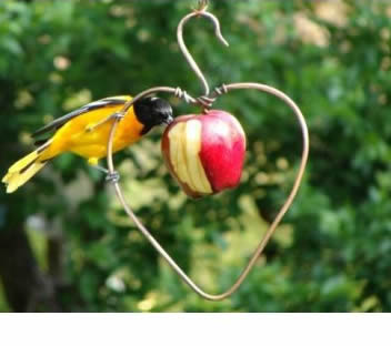 Copper Heart Fruit Feeder
