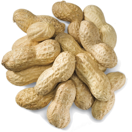 Peanuts In Shell - 5 Lbs.