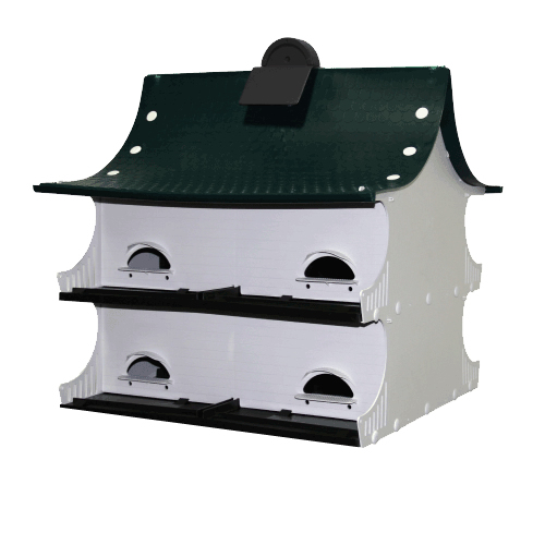 Great Eight Purple Martin Home
