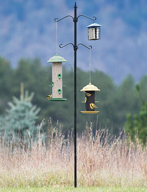 Bird Feeder Station Four Hooks