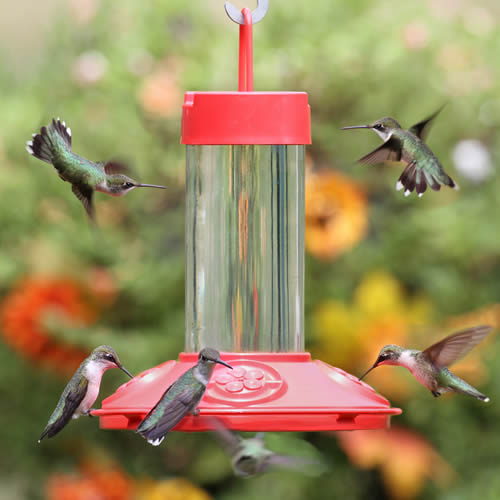 JB's Hummingbird Feeder