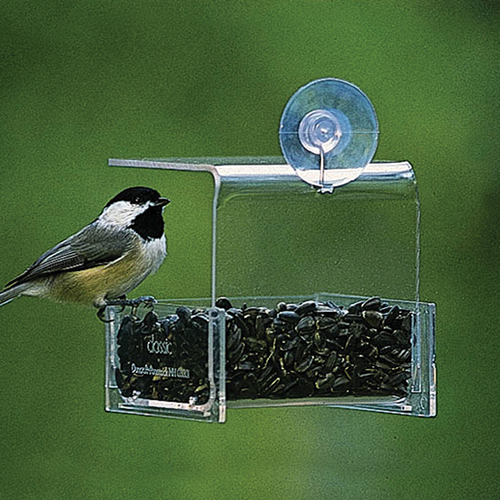 Duncraft Mini Window Feeder