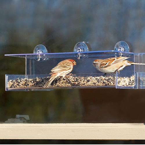 Duncraft Classic III Window Bird Feeder