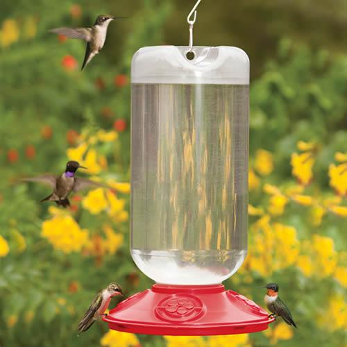 Dr. JB's Hummingbird Feeders
