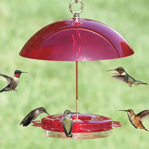 Nature Products  Hummerfest Hummingbird Feeder