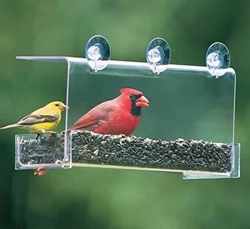 Duncraft Cardinal Classic Feeder