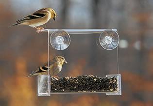 Duncraft Songbird Buffet