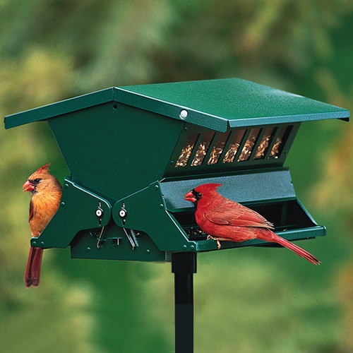 Customers have preferred this bestseller for decadesBased on years of positive feedback, customers prefer this squirrel-resistant, metal feeder for standing strong in the face of squirrels. Each weight-activated perch shuts off the seed supply at the touch of a squirrel's weight. Feeder comes with a Five-Year Manufacturer's Guarantee. Includes two mounting options: hang or pole-mount. This is a 1 inch round sectional pole with a plastic mounting bracket and plastic ground socket. Pole stands 58 inches tall before insertion into the ground. All-steel with speckled green finish and locking roof. 11 x 14 x 9 inches.   Holds up to 8 lbs. of seed for fewer refills Watch more birds feed from both sides of the feeder Features adjustable spring-activated perches to keep out gray squirrels Lift up the roof for easy cleaning & filling