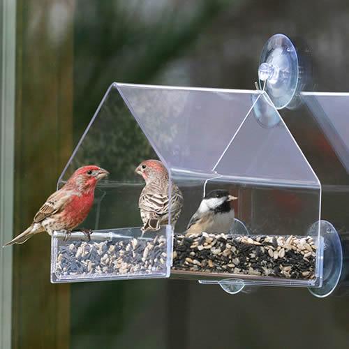 Duncraft Window Chalet Bird Feeder (757) photo