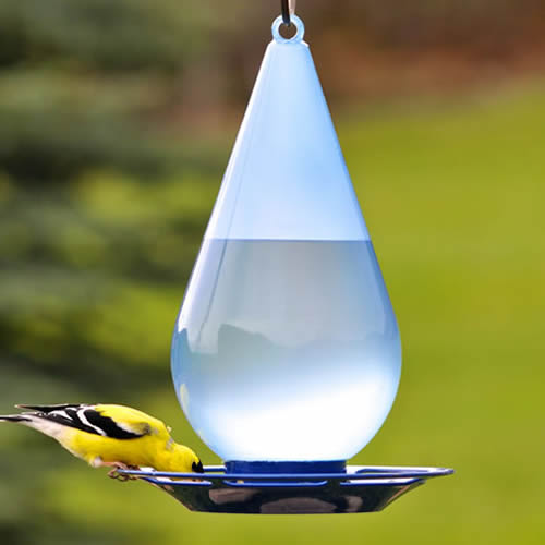Perky-Pet' Droplet Bird Waterer