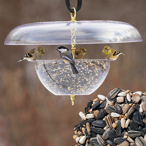 Duncraft Squirrel Proof Tilt Top Feeder Seed