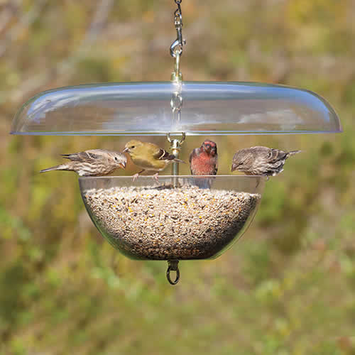 Duncraft Squirrel-Proof Tilt-Top Feeder