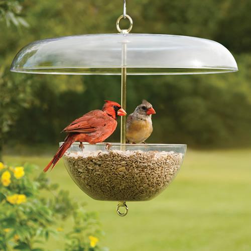 Duncraft Cardinal Feeder