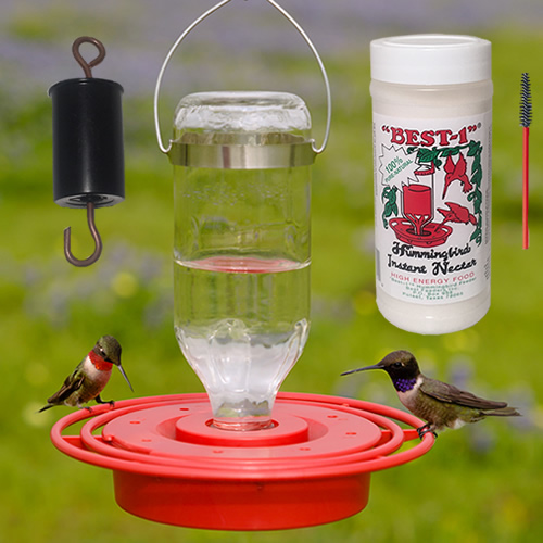 Best 1 Hummingbird Feeder 8 oz. Gift Pack Kit