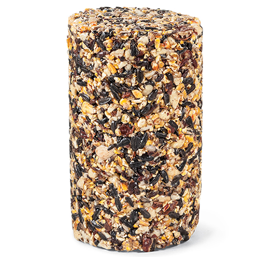 Woodpecker Seed Log - Regular