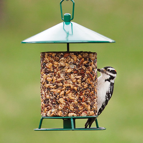 Classic Seed Log Metal Feeder