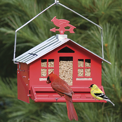 Duncraft Com Squirrel Be Gone Country Bird Feeder