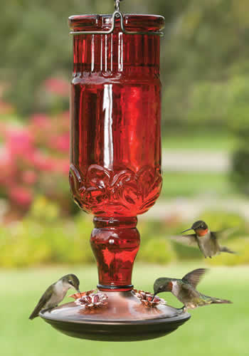 Red Antique Bottle Feeder