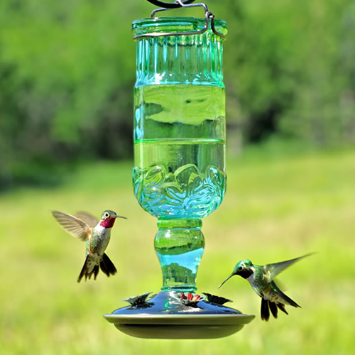 Antique Bottle Hummingbird - Large