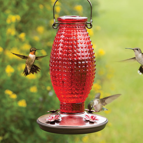 Red Hobnail Hummingbird Feeder