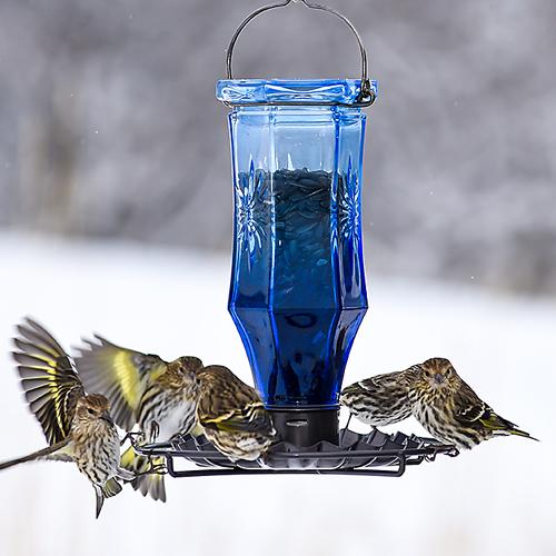 Sapphire Starburst Vintage Wild Bird Feeder
