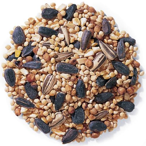 Duncraft Traditional Mix Bird Seed