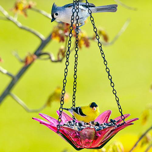 "8"" Recycled Glass & Metal Hanging Daisy Bird Feeder, Fuchsia"