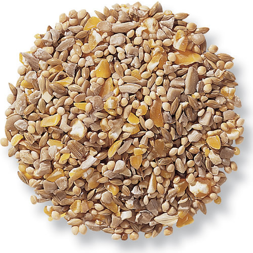 Duncraft Four Seasons No-Waste Bird Seed