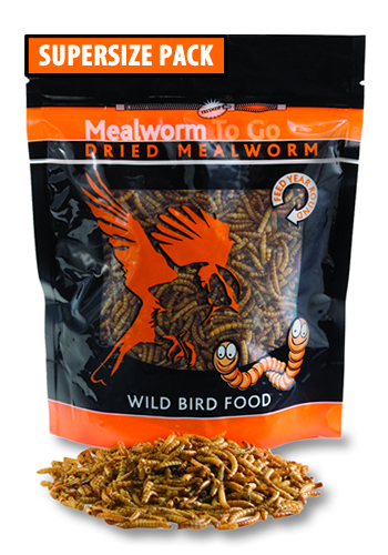 Dried Mealworms To Go, 17.64 oz.