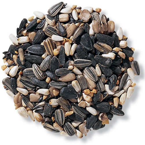 Duncraft Super Songbird Mix Bird Seed