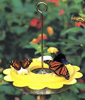 BirdsChoice Butterfly Feeder