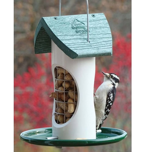 Duncraft Com  Woodpecker Whole Peanut  Mix Feeder
