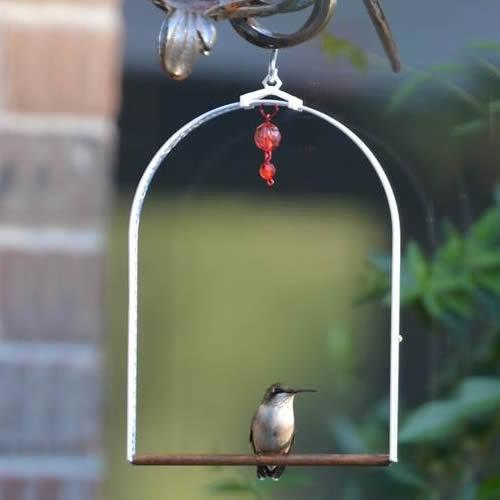 2e276eaa993f0 Duncraft.com  Pops Arbor Hummingbird Swing