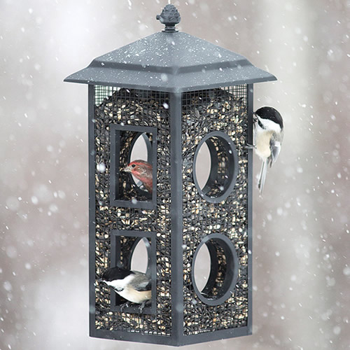 Fly Thru Mesh Wild Bird Feeder