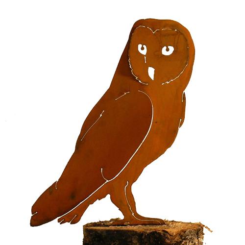 Rustic Barn Owl