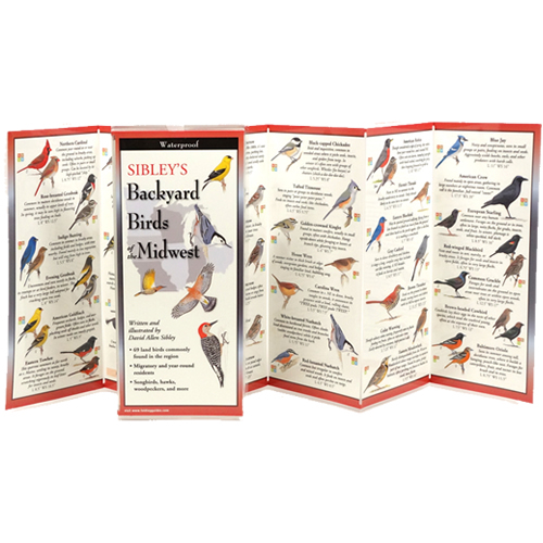 Sibleys Backyard Birds of the Midwest Folding Guide