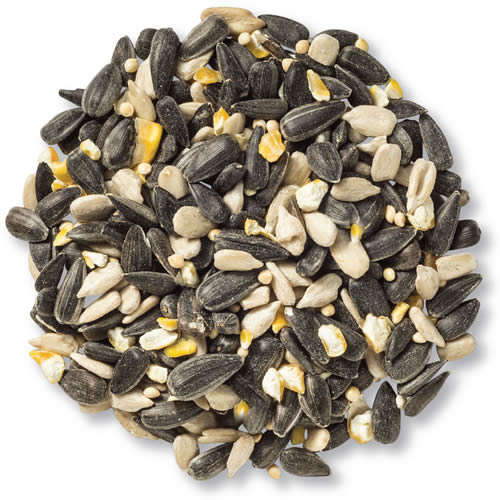 Cole's Blue Ribbon Blend Bird Seed